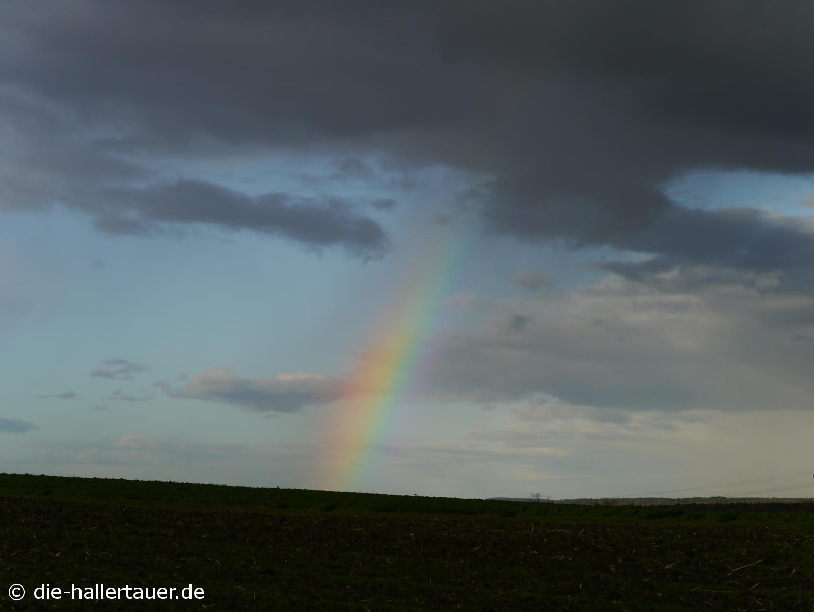 Hallertauer Herbstregenbogen