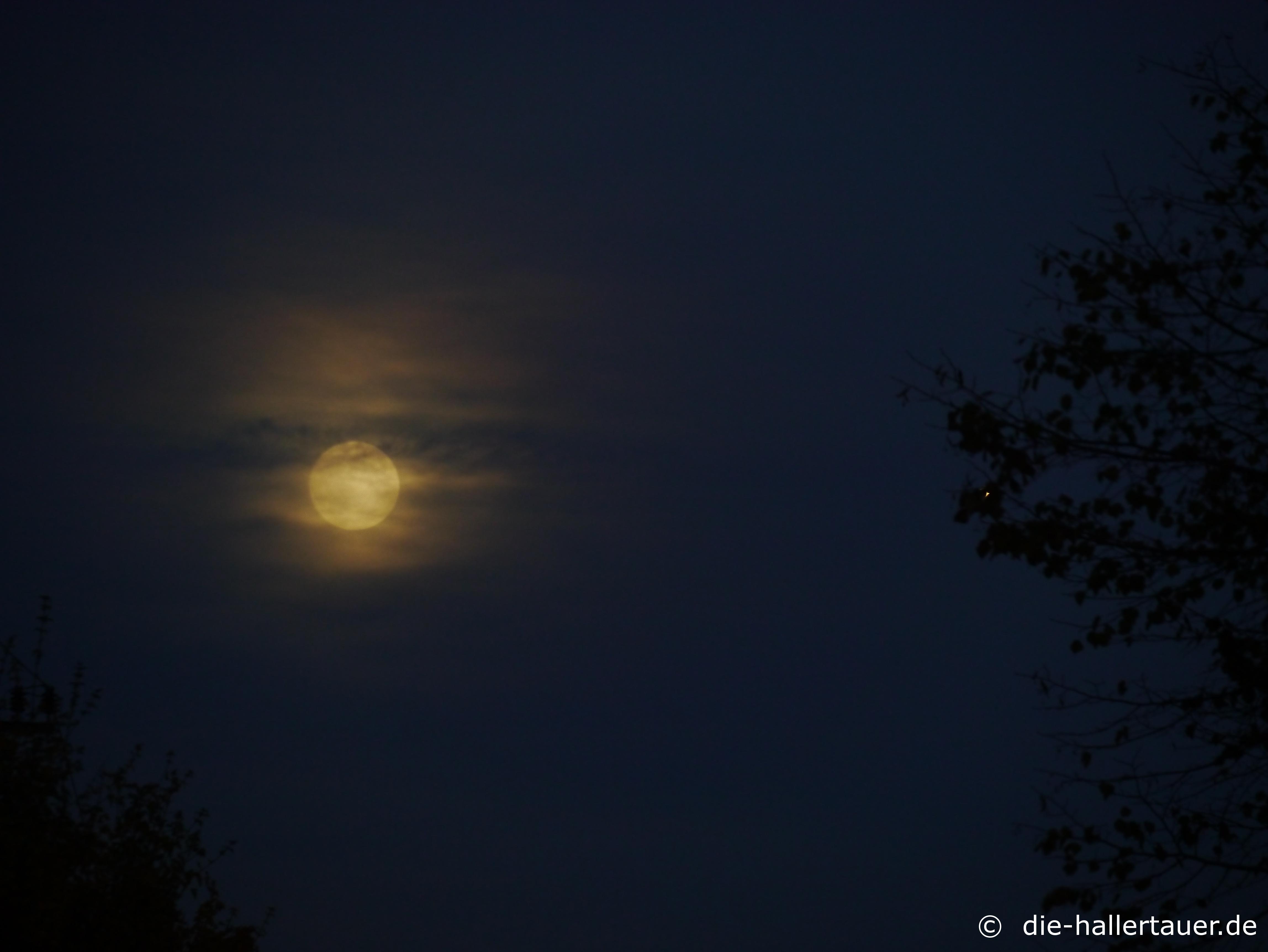 Mond über dre Hallertau