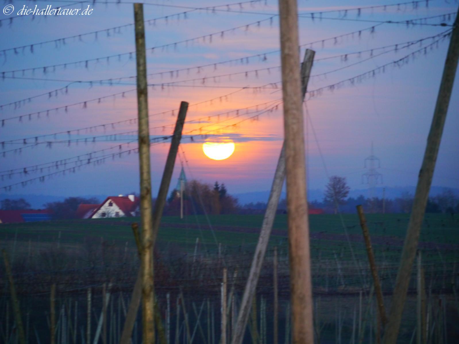 Mond über Osterwaal