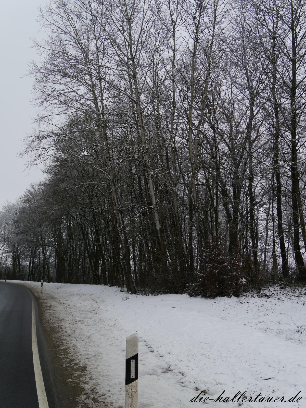 Schnee bei Abens und Dellnhausen
