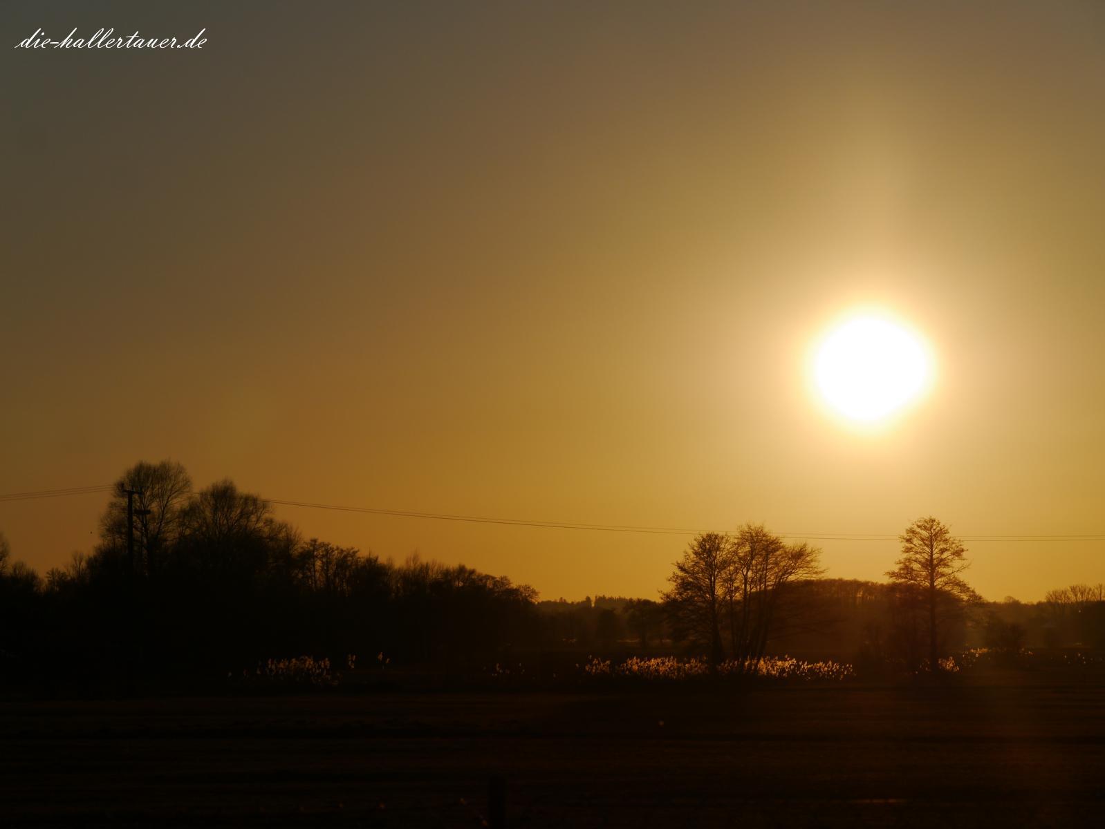 Sonnenuntergang Hallertau
